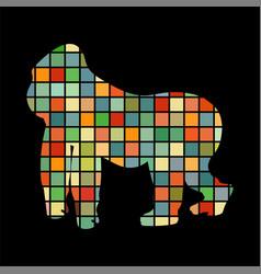 gorilla monkey primater color silhouette animal vector image