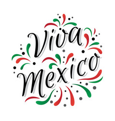 lettering viva mexico traditional mexican holiday vector image