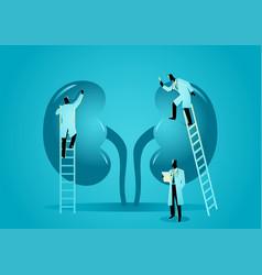 medical graphic hematologist vector image