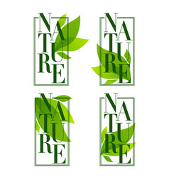 nature frames organic leaves emblems stickers vector image
