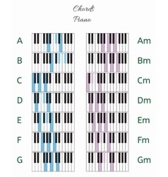 Piano chords infographics with keyboard vector