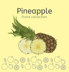 pineapple image vector image
