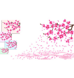 sakura is losing petals curved branches of a vector image