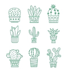 Set of cactus icons vector image