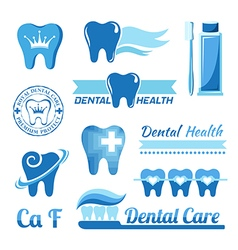 Set of dental decorative elements vector