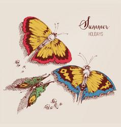 Summer holidays card beautiful butterflies on the vector