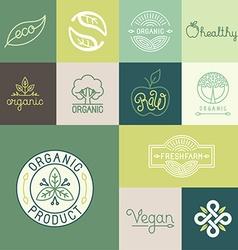 set of natural organic vegan badges vector image vector image