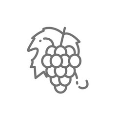 bunch grapes fruit line icon vector image