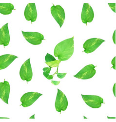 green leaf texture pattern vector image