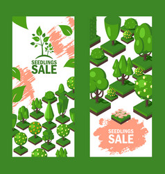 isometric trees on vertical banners seedlings vector image