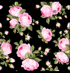 Luxurious color roses vector