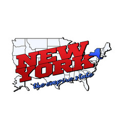 new york state with us new york state on american vector image