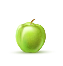 realistic green apple fruit 3d isolated vector image