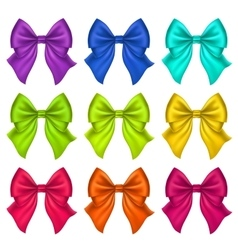 Set of Silk Bow vector image vector image