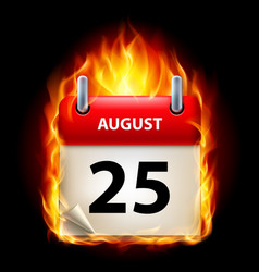 twenty-fifth august in calendar burning icon on vector image