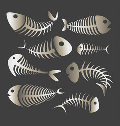 fishbone set icons vector image