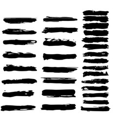 the set of grunge brushes vector image