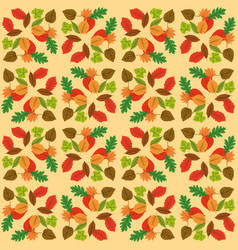 autumn leaf design over white yellow background vector image