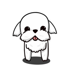 Cute maltese white puppy cartoon for design vector