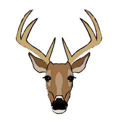 deer antlers animal wildlife image vector image
