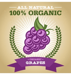 Organic Grapes vector image
