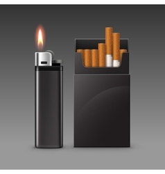 Set Plastic Metal Lighter and Pack of Cigarettes vector