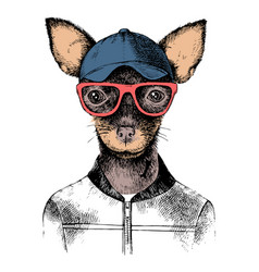 Hand drawn toy terrier hipster vector