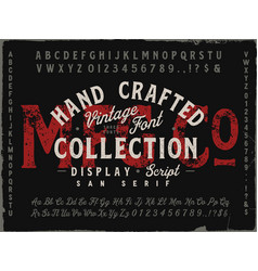 mfg co hand drawn vintage font collection vector image