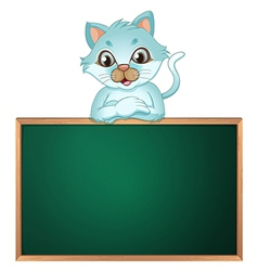 A cat above the greenboard vector