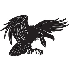 black crow vector image