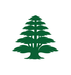 Cedar tree icon vector