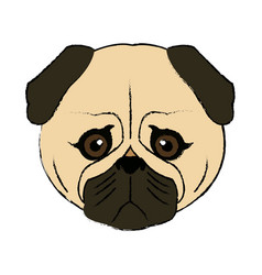 Cute face dog pug pet aminal image vector
