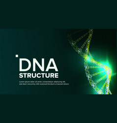 Dna structure abstract helix futuristic vector