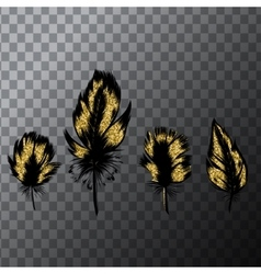 Hand drawn set of gold feathers Vintage vector