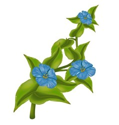 Plant with Blue Flowers vector image