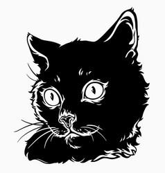 portrait a cute black cat vector image