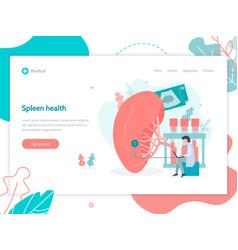 Spleen health medical web page vector