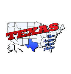 texas state with us state on american vector image