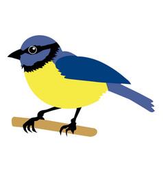 Tit bird vector