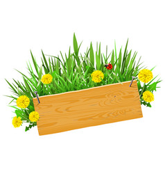 wooden plank with grass vector image vector image
