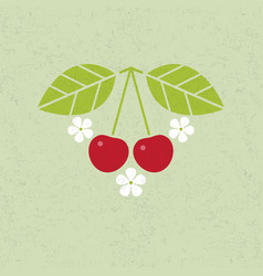 cherry with leaves and flowers vector image