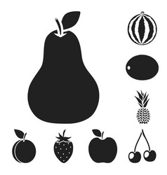 different fruits black icons in set collection for vector image