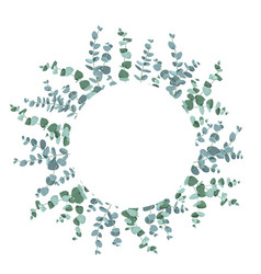eucalyptus tropical plant in form circle vector image