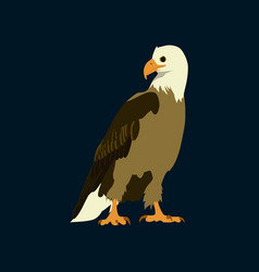 Flat icons on theme of andorra eagle vector