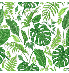 Hand drawn tropical plants pattern vector