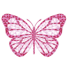 isolated butterfly vector image