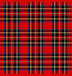 royal stewart modern tartan plaid pattern vector image