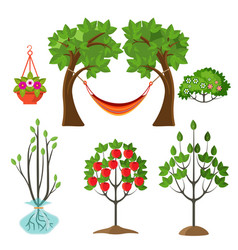 Set of summer plants in gardening concept apple vector