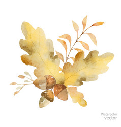 Watercolor autumn bouquet branches and vector