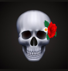 human skull isolated with flower vector image